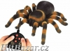 Pavouk Tarantule na dálkové ovládání - 1